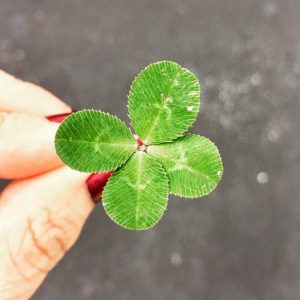 probabilidades trebol 4 hojas